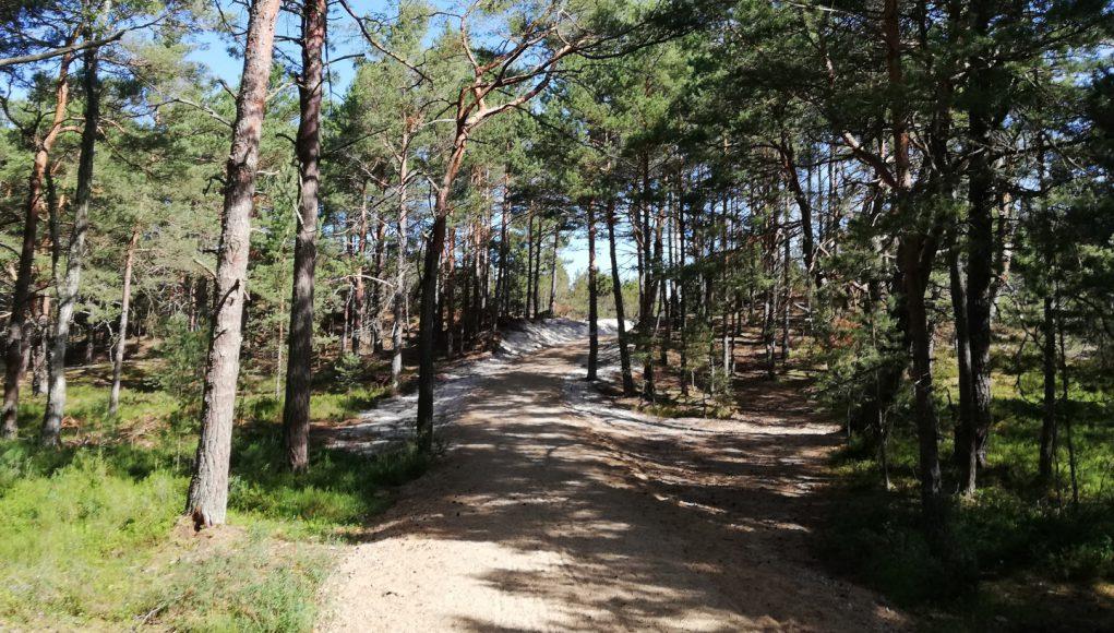 Szlak turystyczny po Mierzei Sarbskiej